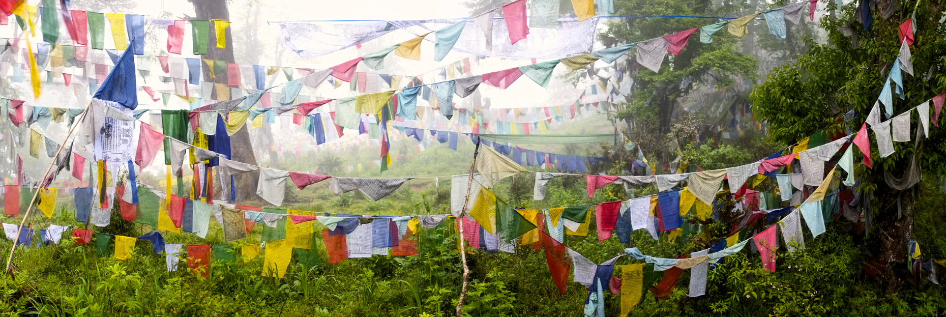 Prayer flag forest in fog,Bhutan/Steve Mason Photography